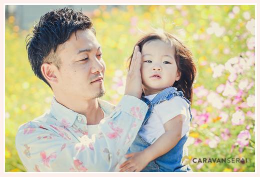 コスモス畑の親子写真 女の子をパパが抱っこ