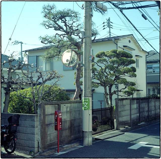On a beautiful day like today - Suginami