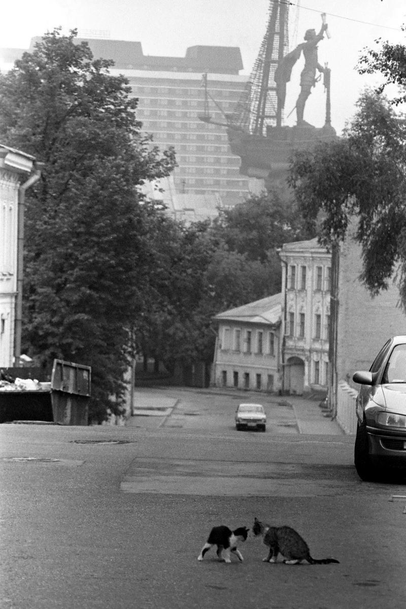1998. Пётр Первый и кошки