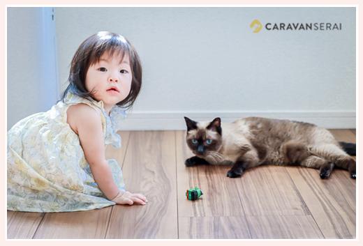 出張カメラマンが撮る自宅で家族写真 ペットのネコも一緒に