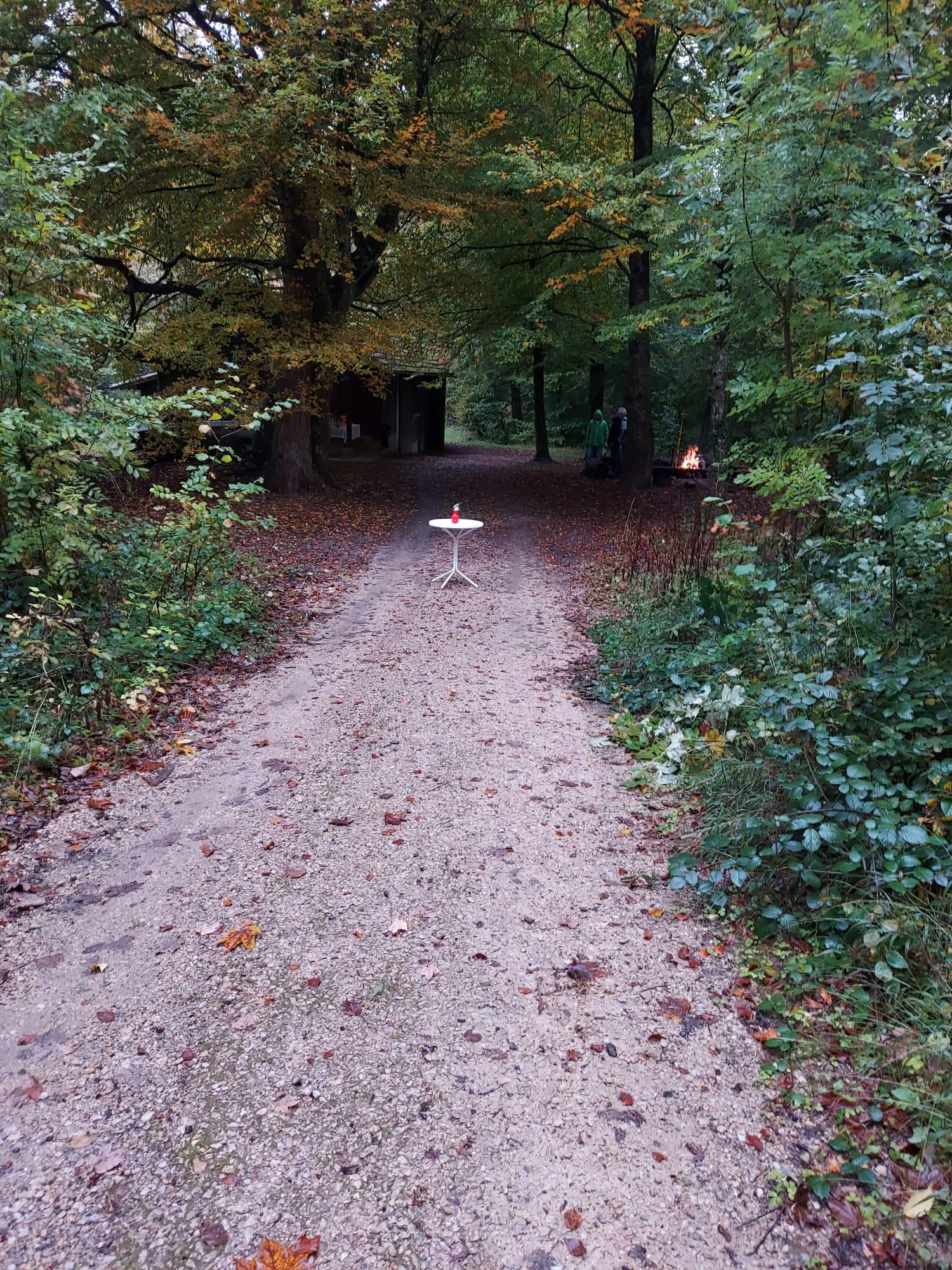 Herbst-Säuli v. 16. Okt. 20