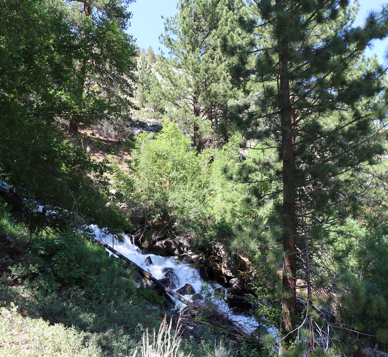First Falls on the North Fork of Big Pine Creek is more of a very long cascade than a true falls
