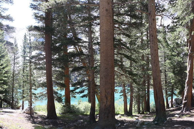 View from our shady campsite looking down at First Lake on the NF Big Pine Creek Trail