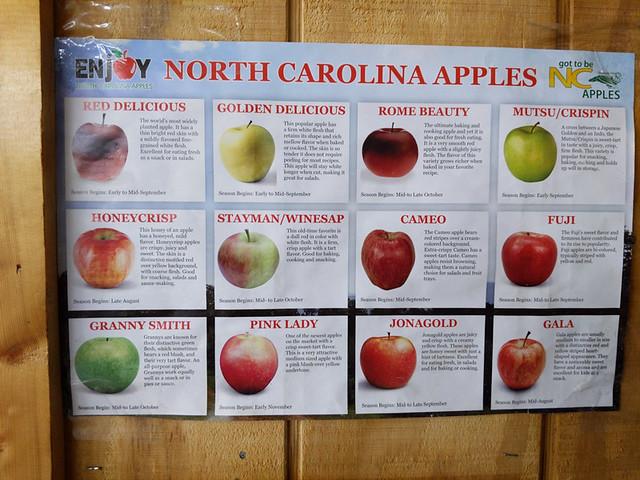 apple varieties @