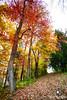 Ohio October