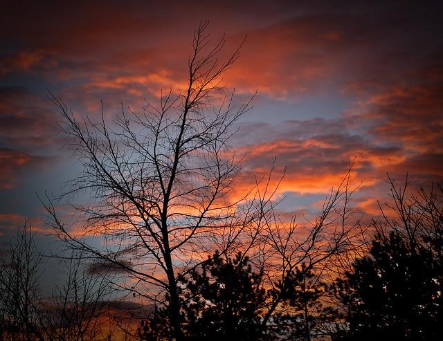 I stood beneath an orange sky