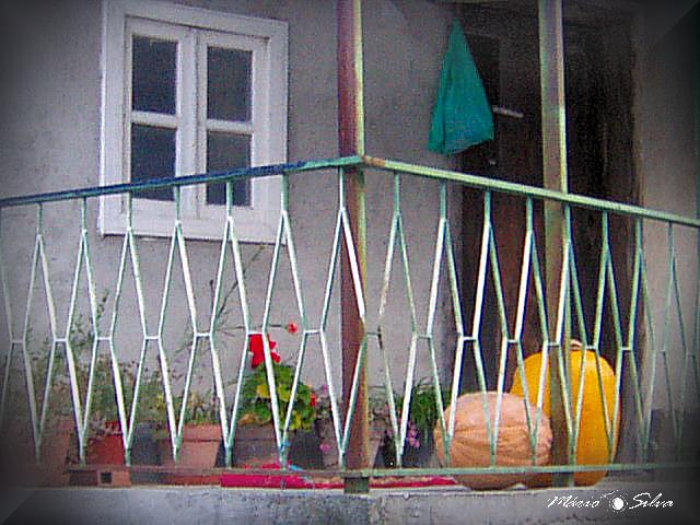 Outono b_ms