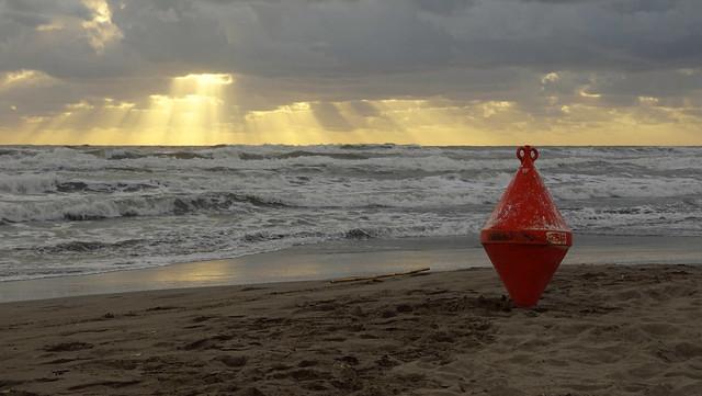 Boa sulla spiaggia di Forte dei Marmi in Versilia