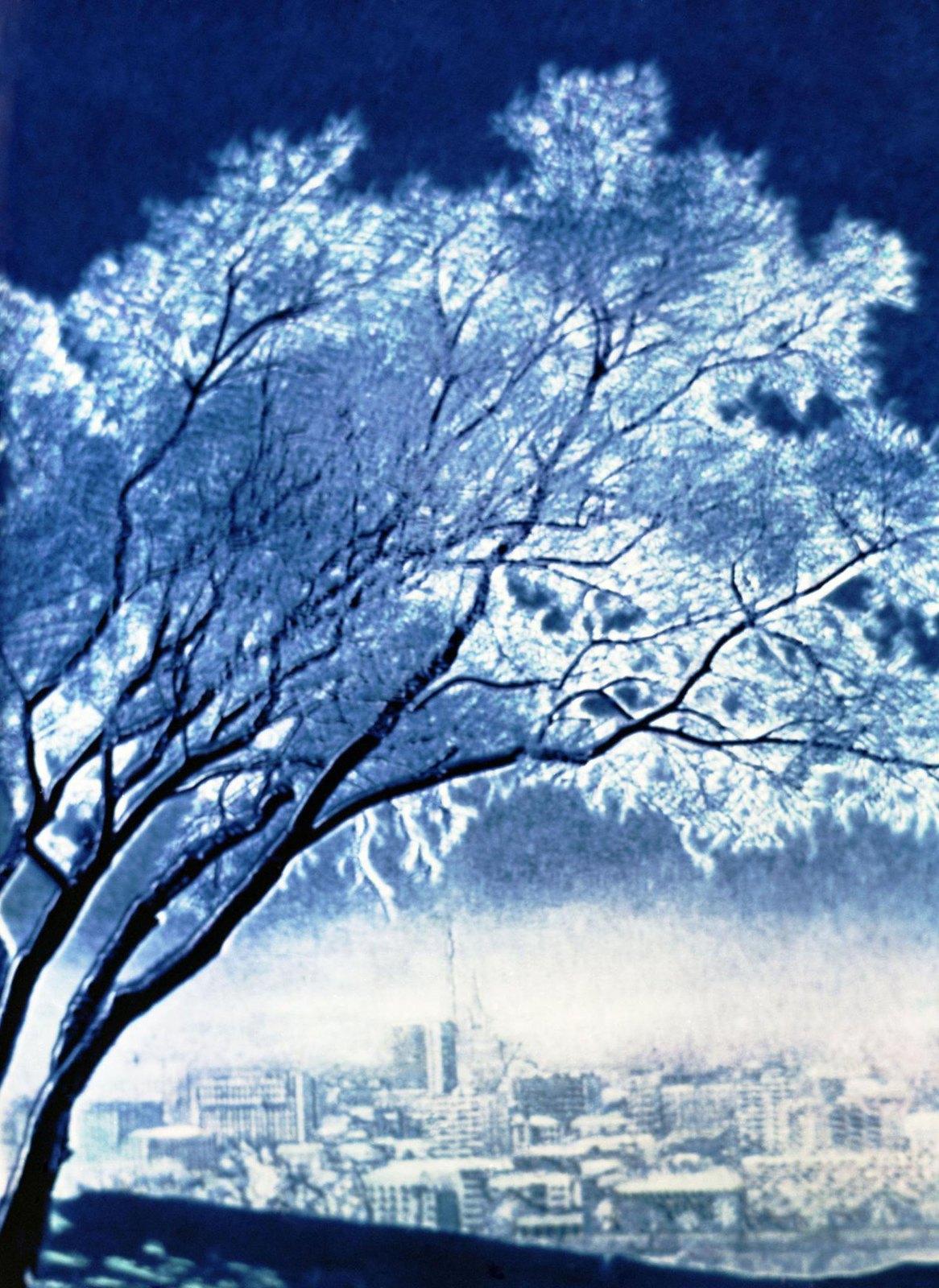 1975-1977. Зима