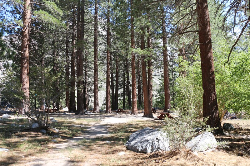 We decided to acclimate to elevation by camping at the old Walk-In Camp just above First Falls