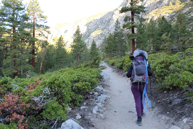 Once above Second Falls, the trail continues uphill through the main canyon on the NF Big Pine Creek Trail