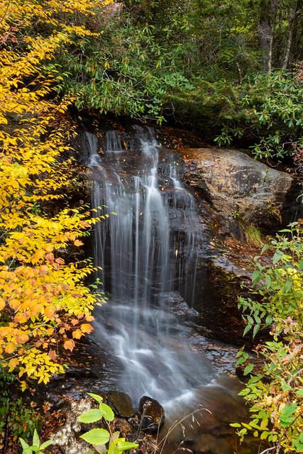 Bubbling Spring Branch Falls