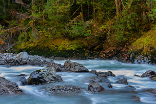 Fall Colors on the Nooksack River