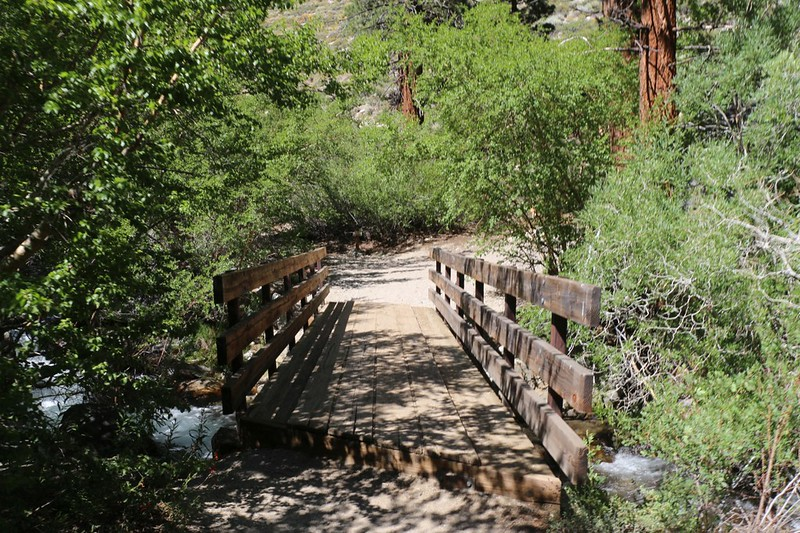 The footbridge above First Falls on the NF Big Pine Creek Trail