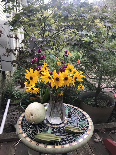 Sunflowers, beauty-berry