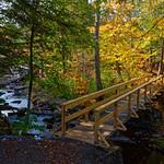 Bridge Over Spruce Creek