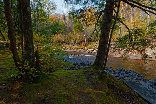 sprucecreek creek water landscape moss texture nature earthy fall autumn outdoor salisburycenter herkimercounty centralnewyork newyork pentax pentaxart kmount k70 hdpentaxda1685mmlens wideangle