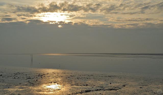 low tide Wadden Sea