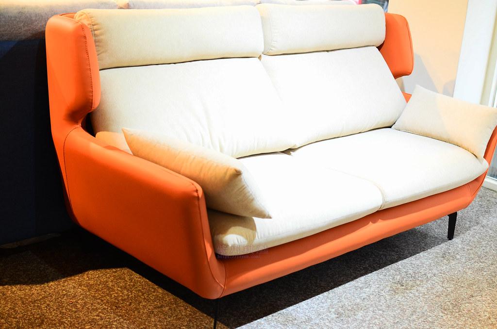 蘆洲貓抓沙發推薦-0001
