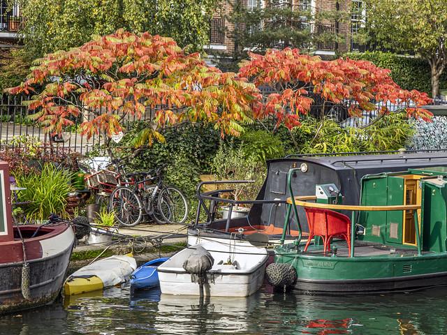 Little Venice, October