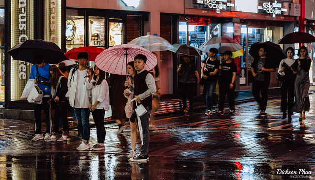 A rainy crossing with umbrellas