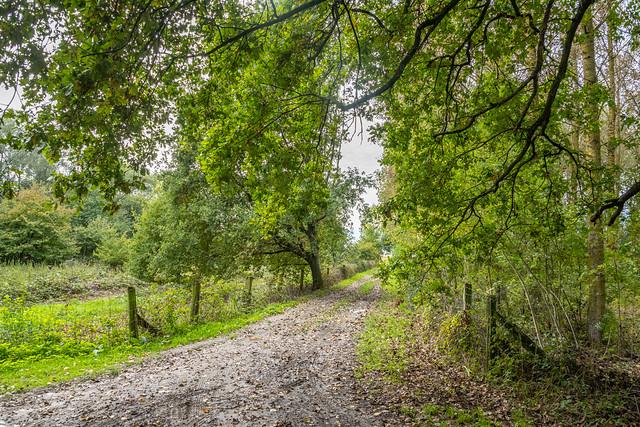 Les petits chemins de randonnées Bachy