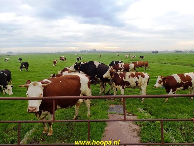 2020-10-17       De Vecht, Weesp  & Naardermeer  26 Km  (11)