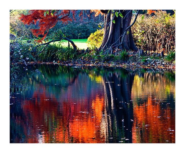 série d'automne (5)