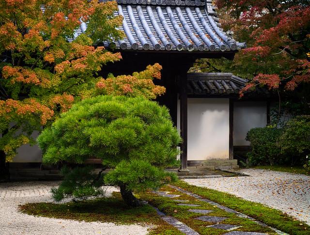 Tenju-an (天授庵) garden