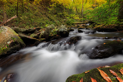 canon 6d 1635 l f4 smith creek landscape long exposure fall autumn color nature outdoor harmon caldwell helen georgia