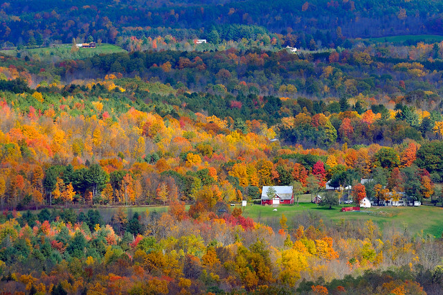 Fall landscape in the Catskills, New York State
