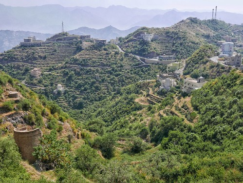 Terraced hillsides near Faifa. | by Peter Gostelow