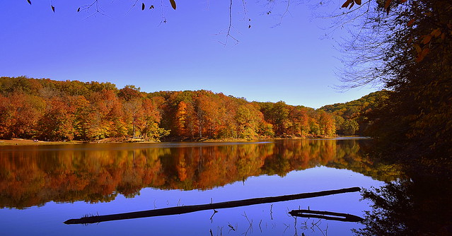 Ogle Lake at Brown County State Park