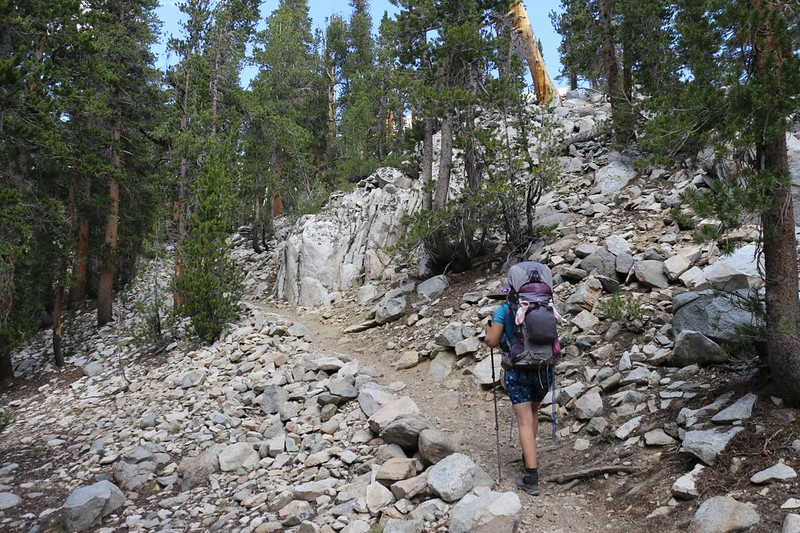 As we continue to Fourth Lake, the NF Big Pine Creek Trail climbs steadily through the forest