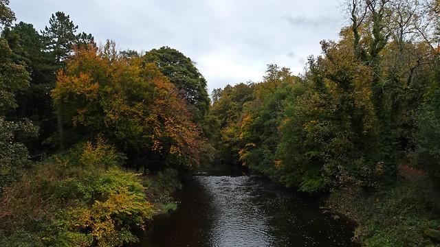 Autumnal Outskirts
