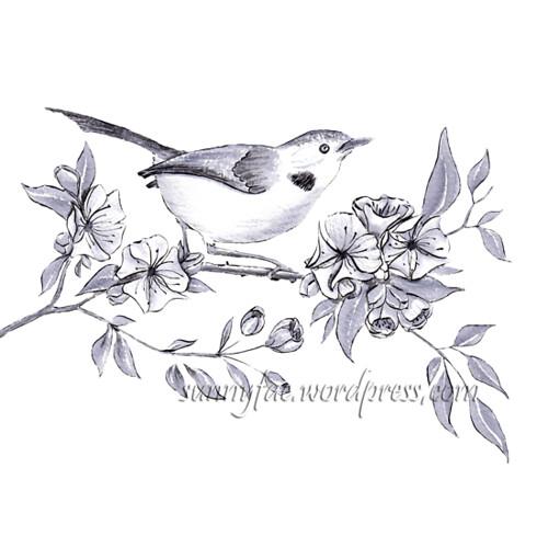 14 bird amongst the blossom