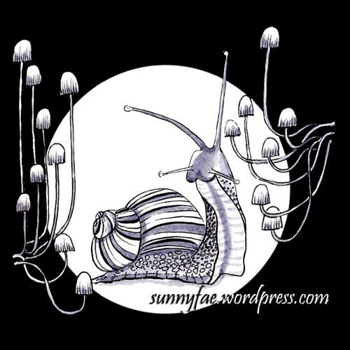 16 snail