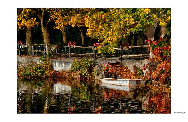 Autumn at the lake ...