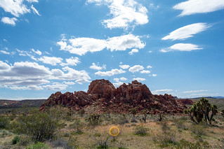 Gold Butte National Monument | by RuggyBearLA