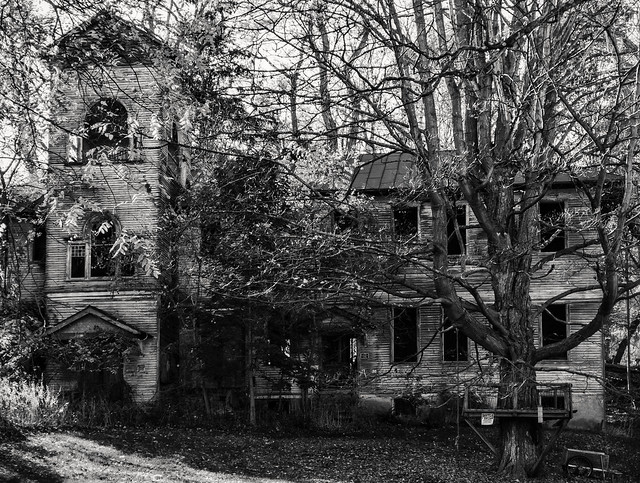 Old School in the Woods B&W
