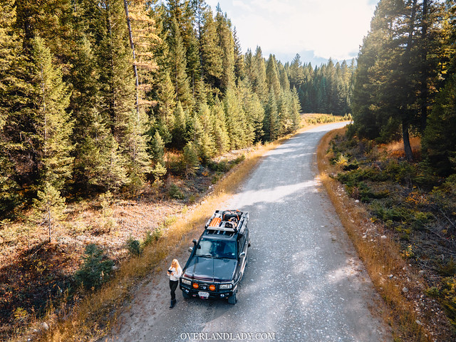 solo overlanding safety tips in the forest road