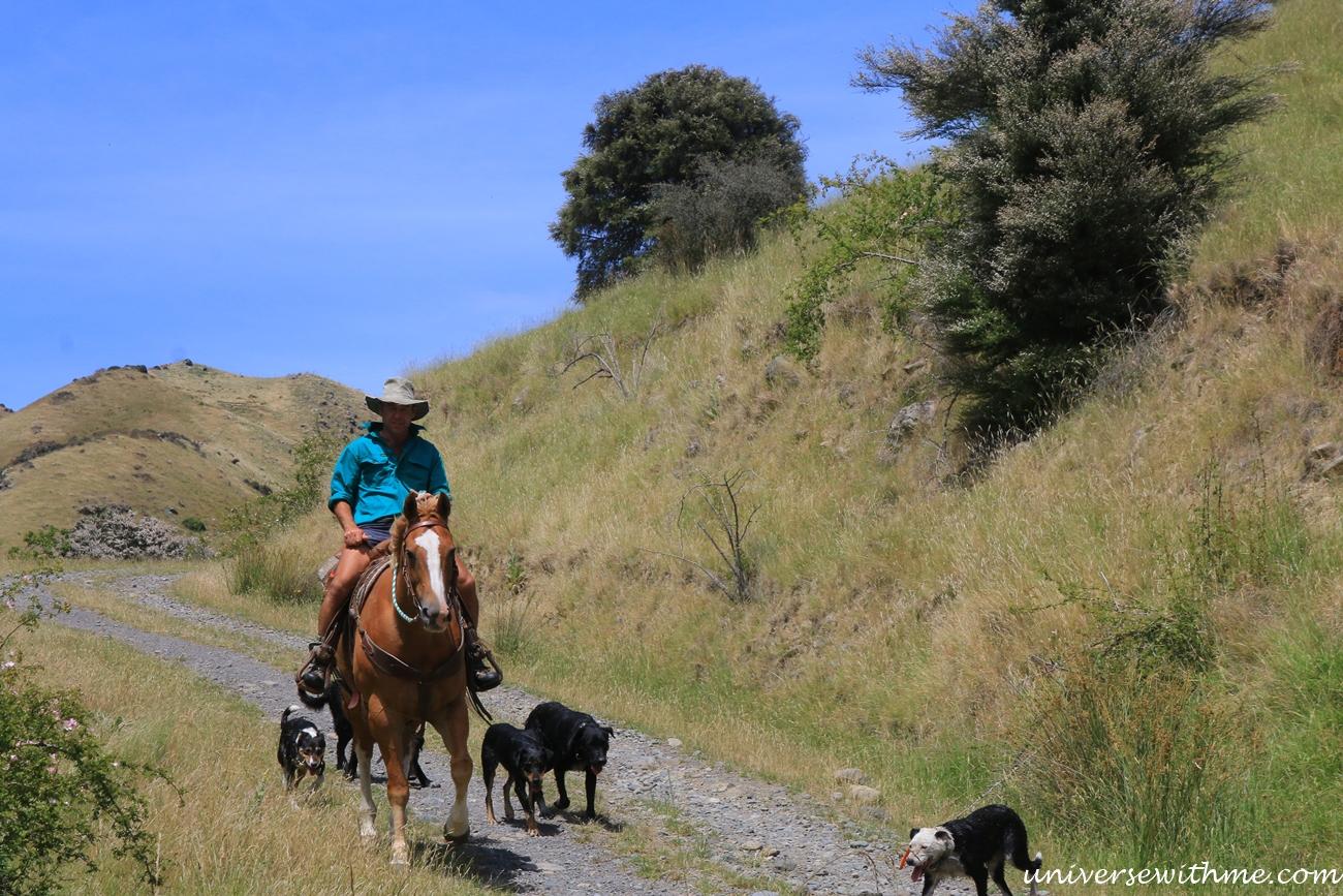 New Zealand Trip Again_044