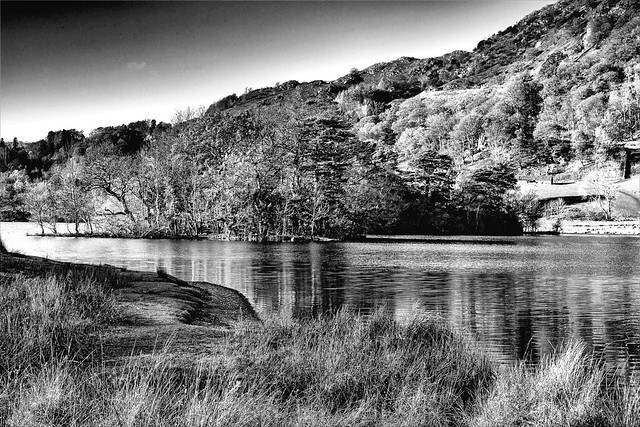 Rydal Water Autumn afternoon monochrome