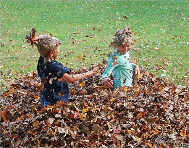 #Leaves (Explored)