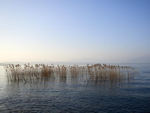 Lake Garda | Italy 2019