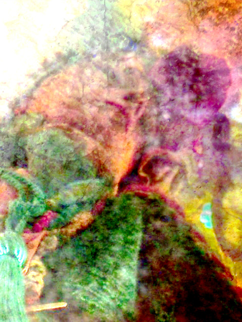Solo for a Sunflower - Portrait