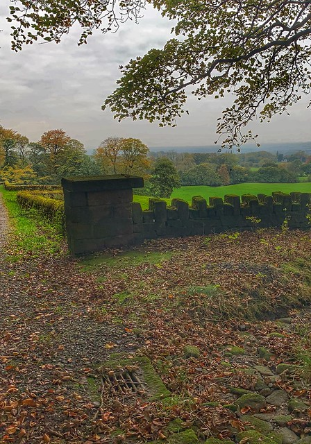 The view, the wall, and the grate...      -     Chorley district