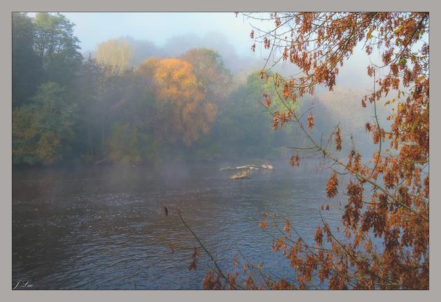 Couleurs d'automne en bords de Vienne...