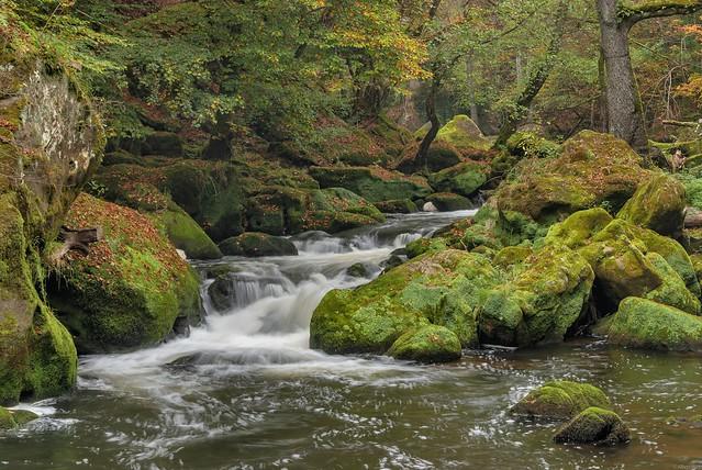 *Herbstidylle an den Irreler Wasserfällen*
