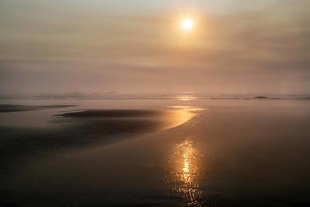 Kalaloch Beach, Washington [Explore Oct. 19, 2020]